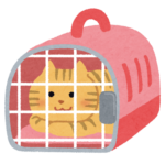 pet_carry_cage_cat