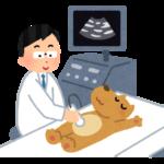 超音波検査|西山動物病院|流山市・松戸市・柏市・野田市