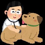 健康診断|西山動物病院|流山市・松戸市・柏市