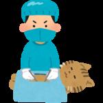 外科手術|西山動物病院|流山市・松戸市・柏市・野田市