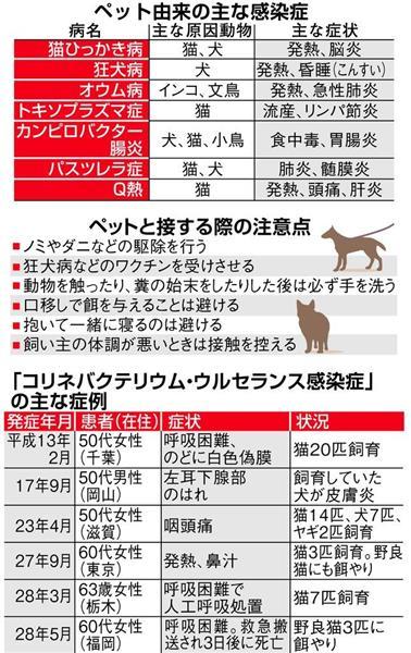 犬 から うつる 病気 動物やペットから病気がうつる!?動物由来感染症|健康とくらし情報...