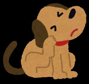 痒い犬のチェックポイント