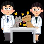獣医師募集 西山動物病院 千葉県流山市・松戸市・柏市・野田市